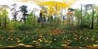 3D фото панорама осени осень 360